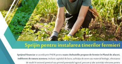 Finanțarea pentru tinerii fermieri din diaspora pare să nu aibă succes! O nouă prelungire a sesiunii.